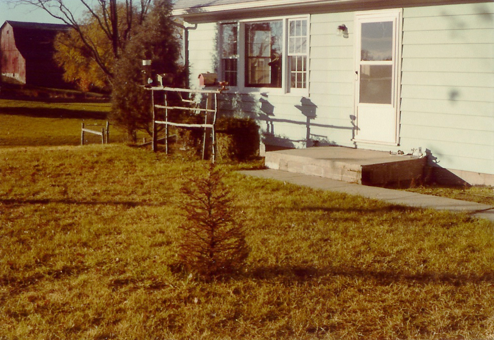 The front yard of my boyhood home from which I would fetch each day's Kalamazoo Gazette.